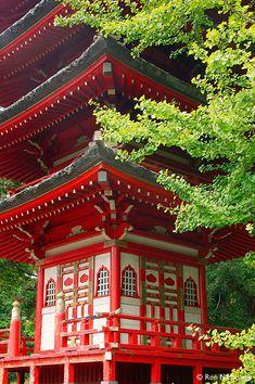 Buddhist Pagoda in the Japanese Tea Garden,San Francisco