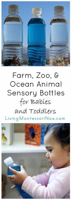 Simple sensory bottles for babies and toddlers using farm, zoo, and ocean animal minis from Safari Ltd.