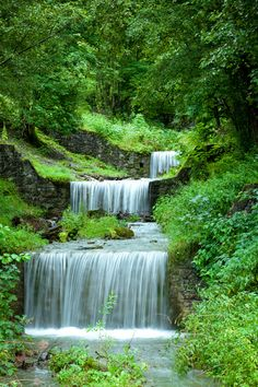 water falls. waterfall. plants. trees. grass. nature.  RP » Lush green falls area.....
