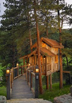 Colorado Treehouse treehouse living, tree houses, colorado cabins, hous project, space, log cabin, place, treehouse inside, nice tree