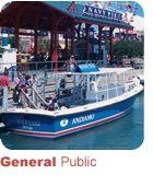 Shoreline water taxi - kids love it!  fun way to get around!