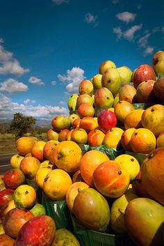 Mangos, tropical fruit