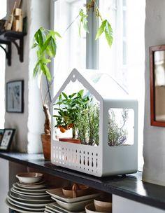 IKEA PS 2014 indoor greenhouse