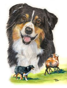 Terry Albert – Dog Lover and Artist Extraordinaire  By Deb Eldredge, D.V.M.