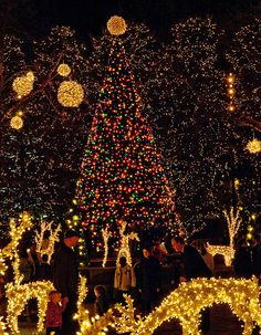 Christmas in James Center, Richmond