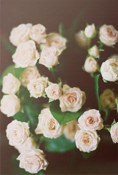 Nothing says romance like roses.