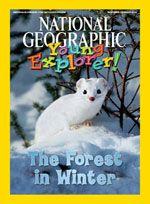November-December 2008 cover