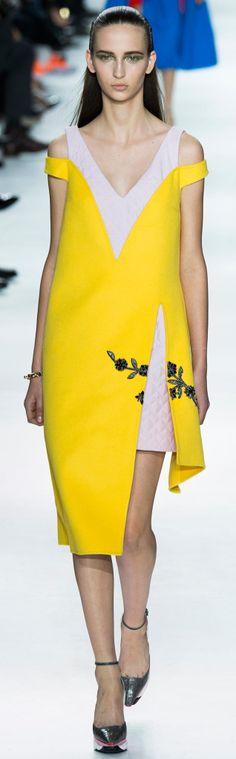 Christian Dior - Fall 2014