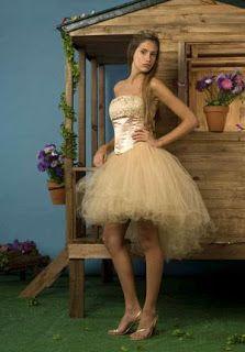 Fotos de quinceañeras con Vestidos PARA 2012-2013