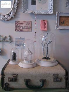 bell jar displays.