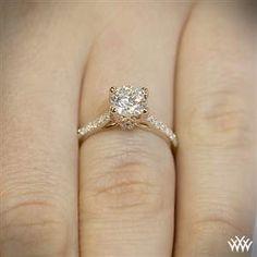 diamond engag, diamond rings, diamonds, couture, engagements, diamond pave, whiteflash verragio, engag ring, engagement rings