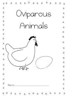 Oviparous Animals (free)