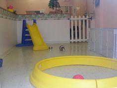 Puppy Playroom Ideas On Pinterest Play Areas Playground