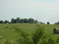 Rolling Hills of Kentucky