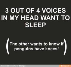 funniest quotes, shell, late nights, thought, penguin, sleep, benedict cumberbatch, true stories, the voice