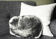 sleeping cat pillow     xx