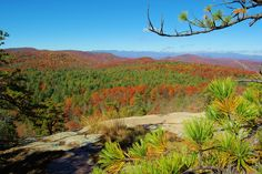 Fall color in late October at Cedar Rock in DuPont State Forest in the North Carolina mountains