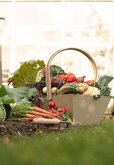 Garden Vegetables Harvest Chart