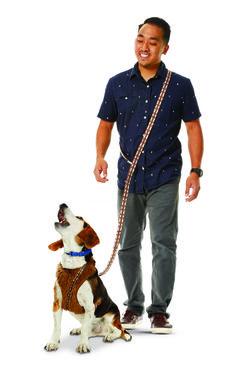 STAR WARS ™ Chewbacca ™ Dog Lead