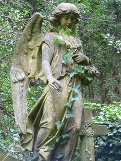 Angel with ivy at Highgate cemetery