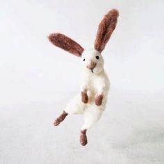 hap hap happy bunny