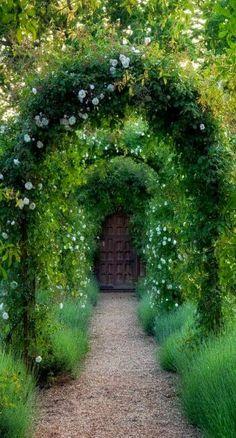 Lush arches on garden path