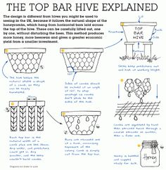 Top bar bee hives