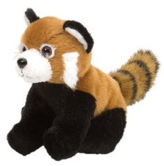 Itsy Bitsy Red Panda (5-inch) at theBIGzoo.com, a family-owned toy store. red pandas, toy store, panda 5inch, familyown toy
