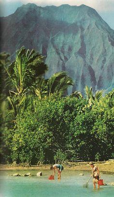 1959. Hawaii