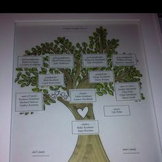 Martha Stewart/Darcy miller inspired family tree project