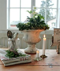 holiday, shabbi white, simpl christma, christma rose, white christmas, vintage houses, vintag hous