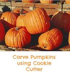 holiday, idea, pumpkin patch, autumn, food, fall, pumpkins, pumpkin recip, halloween