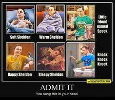 Dr Sheldon Cooper