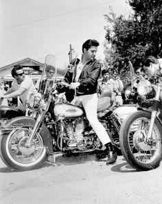 harley davidson, roll, vintage motorcycles, bike, looking back