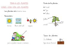 Temas adaptados en forma de esquema para 2º de E.P.En Valenciano  Trabajo realizado por Ana Vallés  como colaboradora del Blog AulaPT