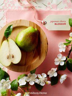 An award-winning blend of pear, Japanese cherry blossom & sandalwood. #JapaneseCherryBlossom sweet smell, sensat scent, japanes cherri, cherry blossoms
