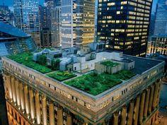 Chicago City Hall Rooftop Garden