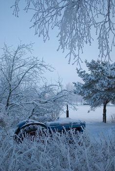 Taste of Winter � Through Several Amazing Photos (Part 1)