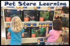Mini Field Trips: Pet Store Learning - 3Dinosaurs.com
