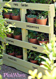 Herb garden made from a pallet.