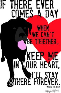 If there ever comes a day when we can't be together, keep me in your heart, i'll stay there forever. (black lab)