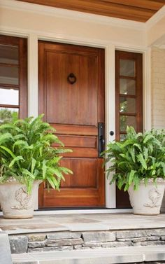 Pretty potted ferns by the front door.