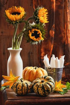 Simple Decorations for Fall Party Planning from Punchbowl