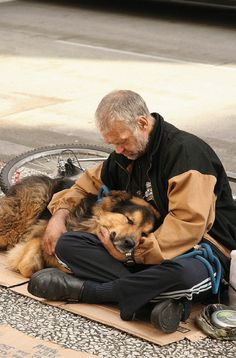 Photos Of Homeless Dogs