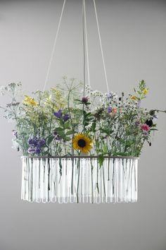 Maria S.C. single test tubes chandelier  :: Flowers in the test tubes! Cute idea.