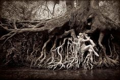 Valentina de Pertis: Kirsty Mitchell Photography - Wonderland.