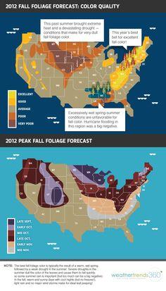 2012 Fall Foliage Forecast: Color Quality