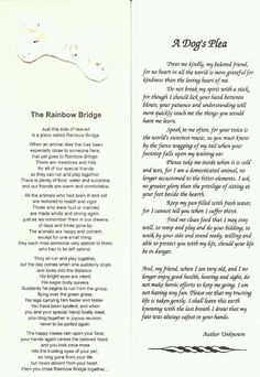 Both of these make me cry...but Rainbow Bridge makes me BAWL