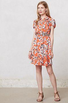 Spectrum Day Dress
