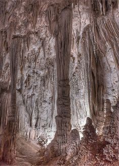 What: explore Carlsbad Caverns National Park Where: New Mexico